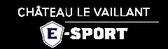 Château Le Vaillant Internat Collège et Lycée spécialisé esport